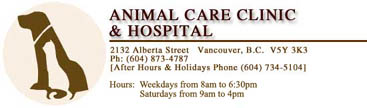 Animal Care Clinic & Hospital, Vancouver, B.C.