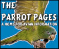 Parrot Pages Search Engine