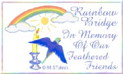 Rainbow Bridge Remembers Your Special Friends!