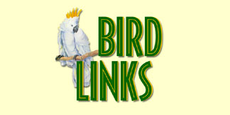 Check Out These Fun Bird Related LInks!
